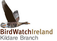 Kildare BirdWatch Logo