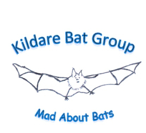 Kildare Bat Group